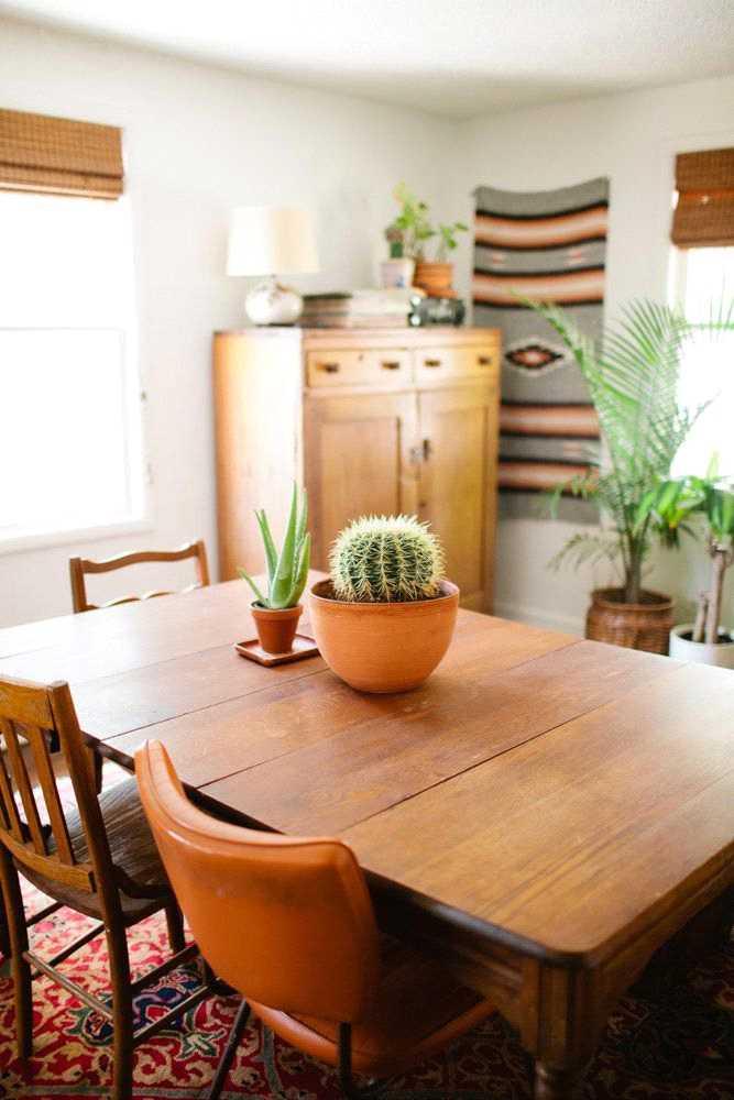 تزئین میز ناهارخوری با کاکتوس